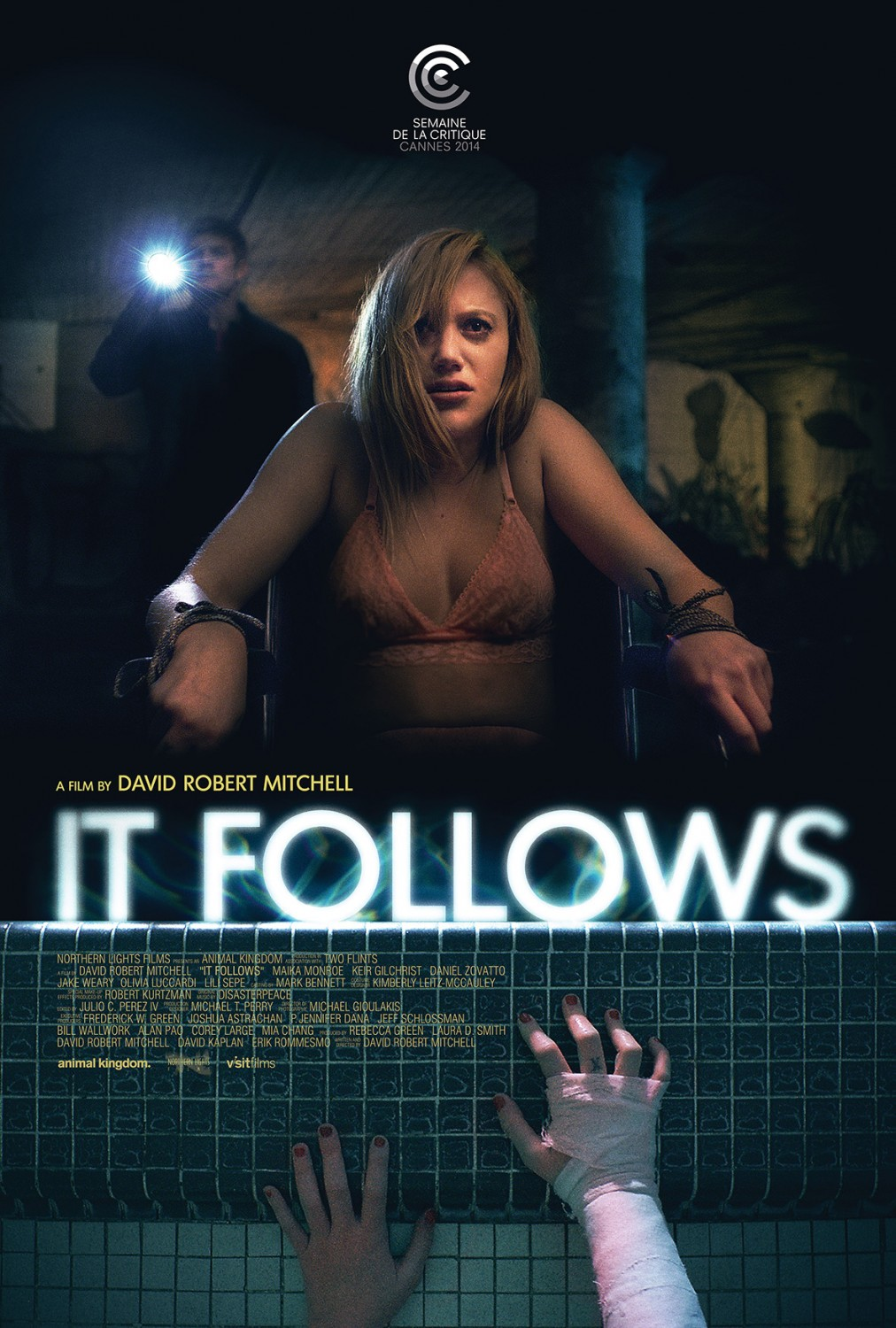 david robert mitchell it follows